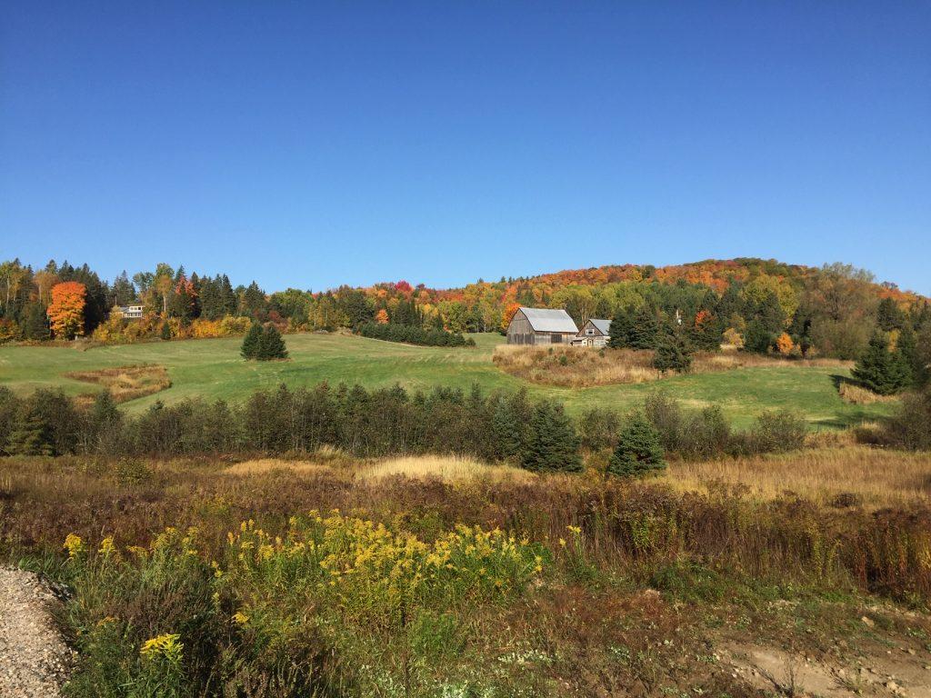 paysage automne- centre de vie