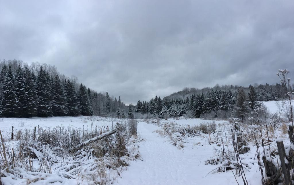 centre de vie, paysage hivernal, froid du québec